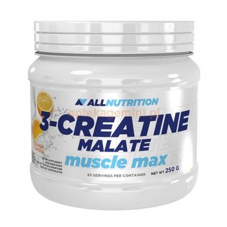 Allnutrition 3-Creatine Malate 500 gr.