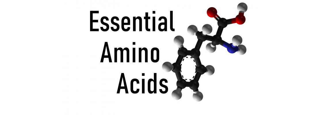 10 причини да приемате аминокиселини, докато тренирате