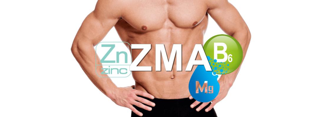 Коя хранителна добавка ZMA да изберем?