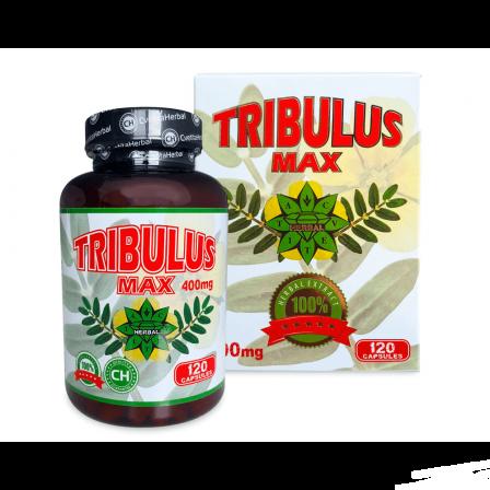 Cvetita Herbal Tribulus Max 120 caps.