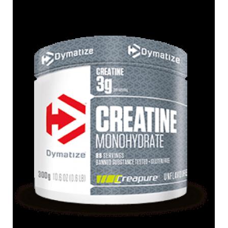 Dymatize Creatine Monohydrate Creapure 300 gr.