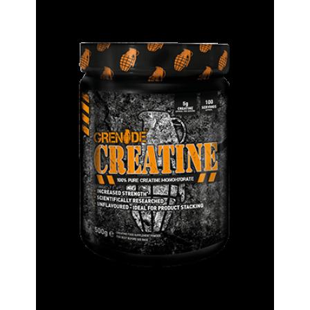 Grenade Essentials Creatine 500 gr
