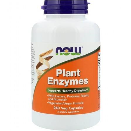NOW Foods Plant Enzymes 240 veg caps.