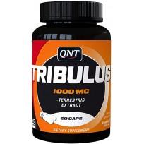 QNT Tribulus Terrestris 60 caps.