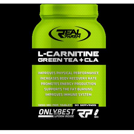 Real Pharm L-Carnitine Green Tea CLA 90 caps.