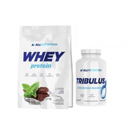 Allnutrition Whey Protein 908 gr + Allnutrition Tribulus 100 caps.