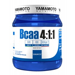Yamamoto Nutrition BCAA 4:1:1 500 tabs.
